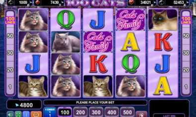100 Cats slot game