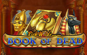 slots similar to book of dead