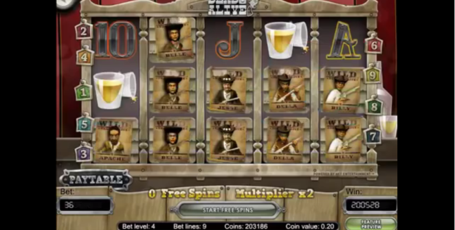 Big win on Dead or Alive slot